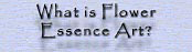 What is Flower Essence Art?
